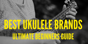 Best ukulele brands - ultimate guide