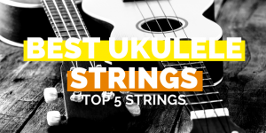 Best ukulele strings - Top 5 strings