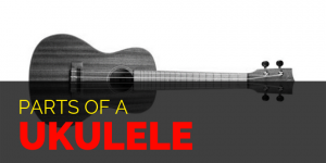 Parts of a Ukulele - Featured